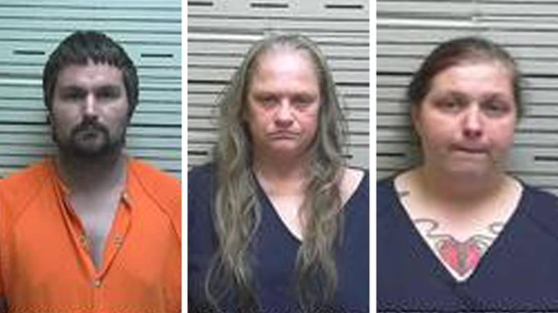 Deputies arrested Joshua Daniel Martin, Danielle Nicole Martin, and Vickie Seale Higginbotham,...