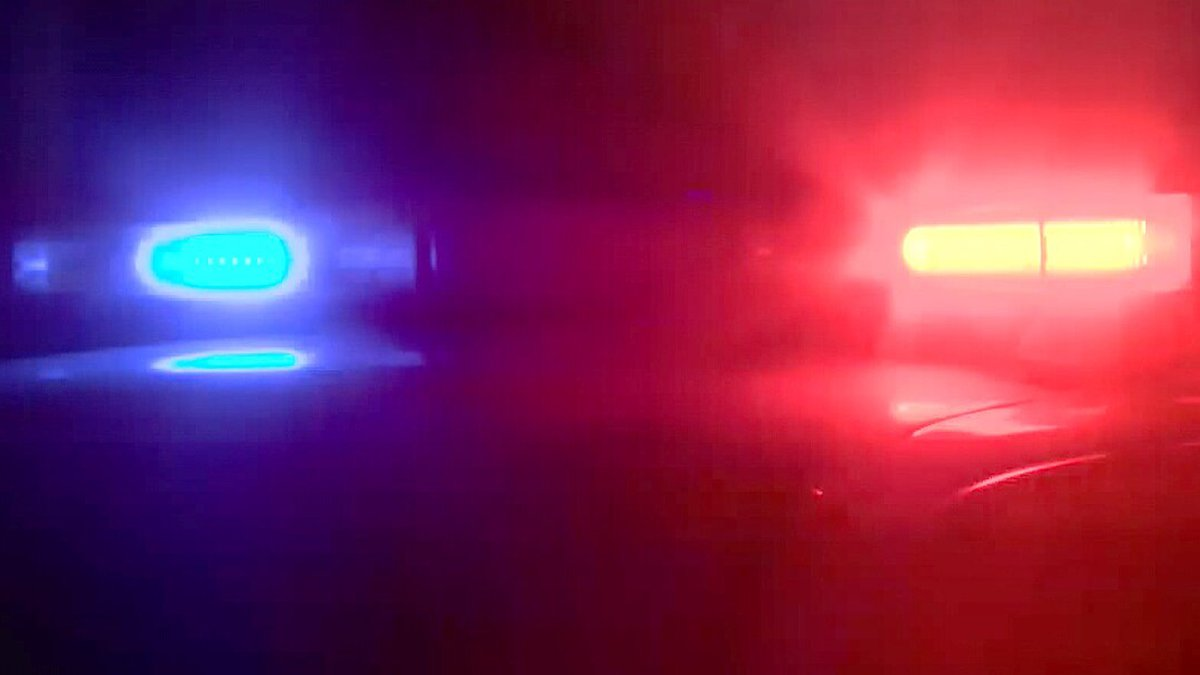 One person is dead following an early morning hit-and-run in Statesboro Sunday.