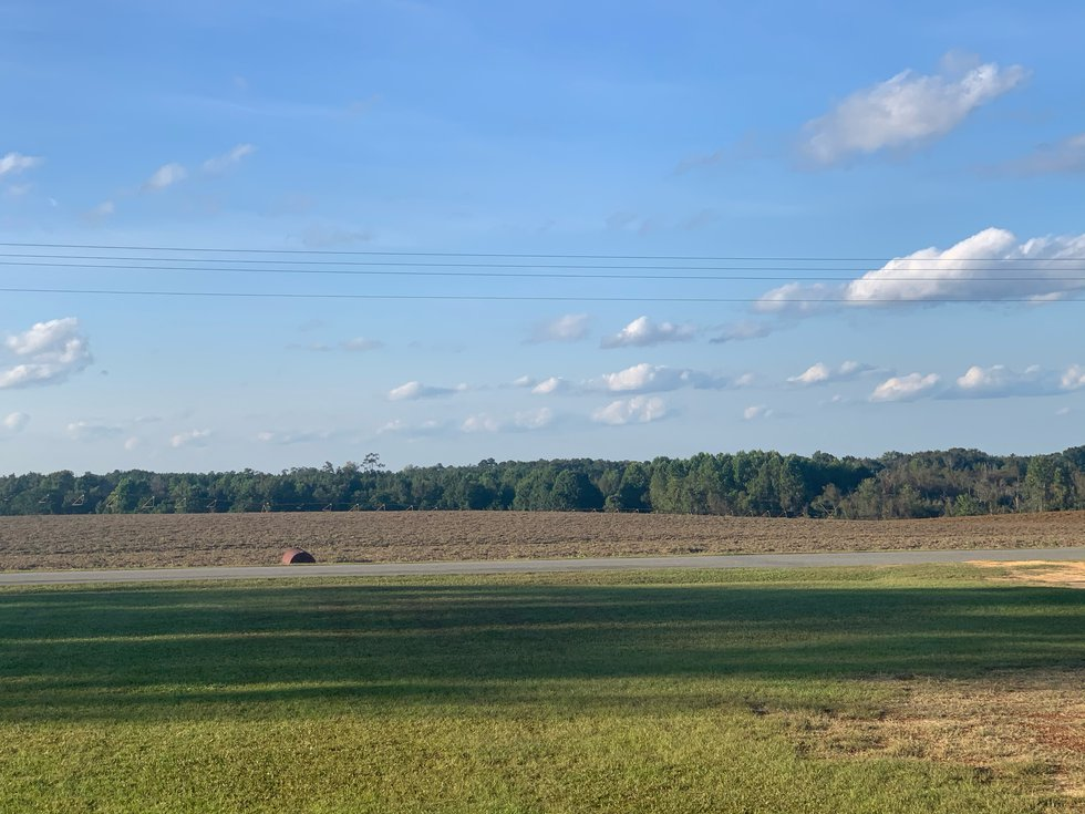 One of Ben Boyd's field used to grow peanuts captured by Leslie Teston.