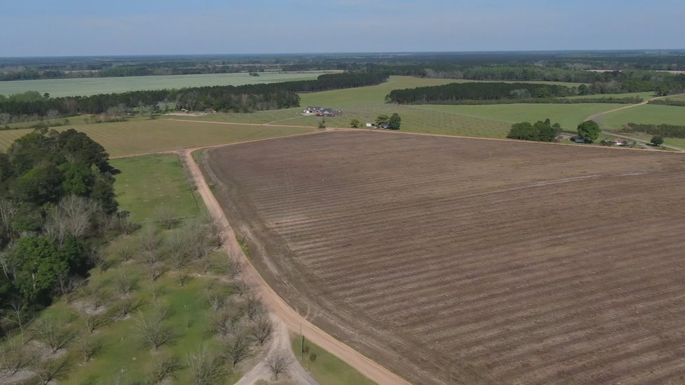 The Turner's farm nearly 2,800 acres in Baxley, Georgia.