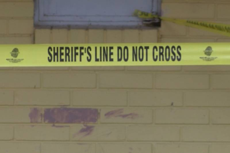 Investigators in Screven County have a suspect in custody after they say a woman was beaten to...