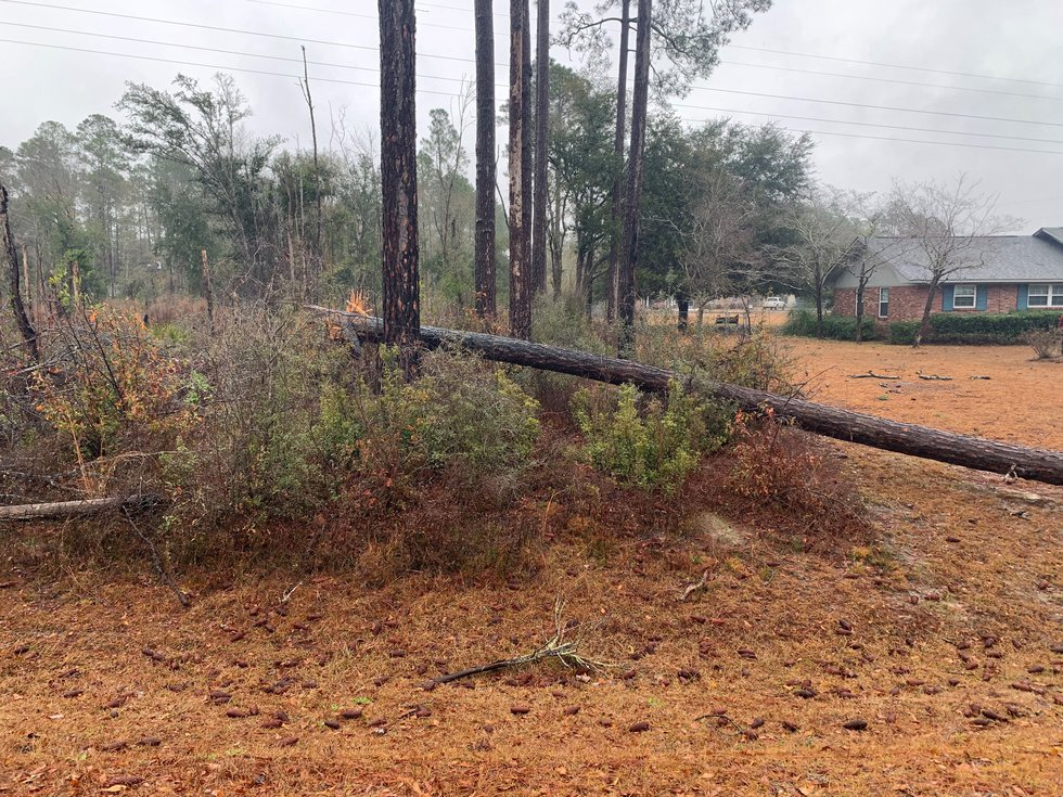 Most of southeast Georgia just saw gloomy weather, but some in Bryan County saw storm damage.