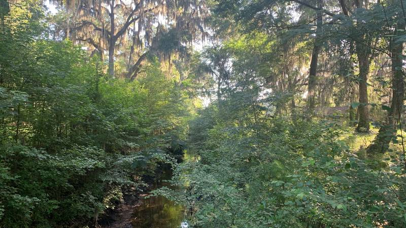 The Savannah Ogeechee Canal Museum & Nature Center is located in extreme western Chatham...