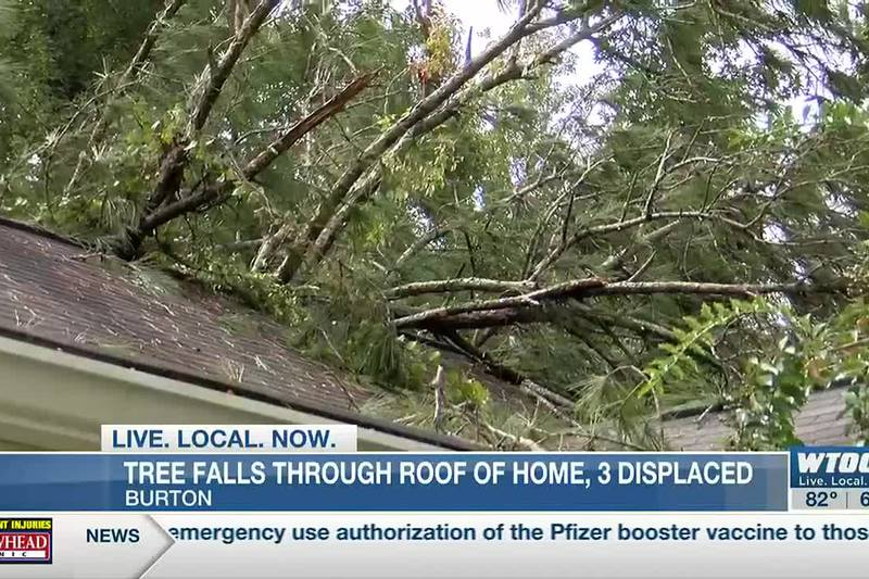 3 displaced after tree falls through roof of Burton home
