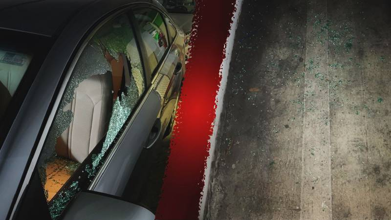 Pictures from a break-in inside of Savannah's Whitaker Street garage.