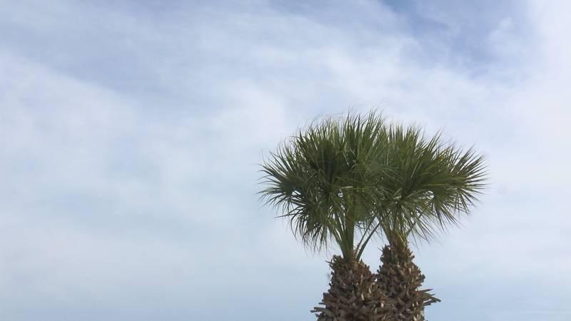 The South Carolina Lowcountry is preparing for Hurricane Elsa.