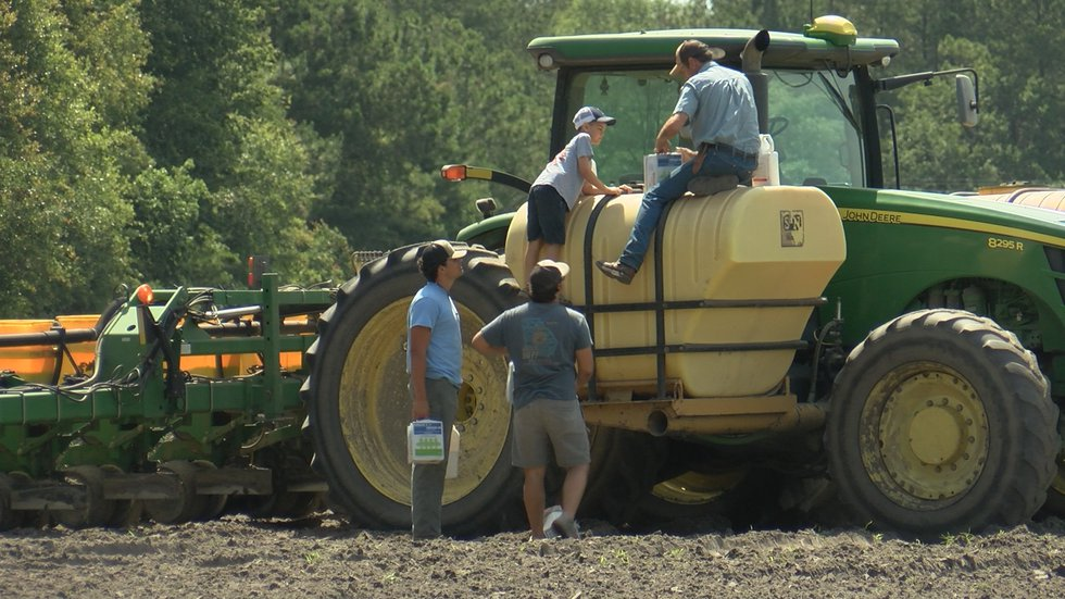The Boyds have been farming for over 100 years.