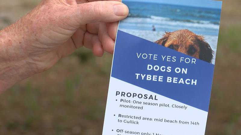A group of residents on Tybee Island are once again talking about the opportunity for dogs to...