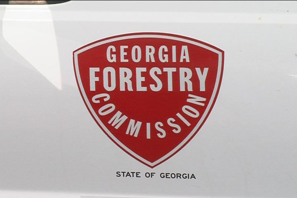 The Georgia Forestry Commission logo on one of its trucks. The Forestry Commission is in charge...