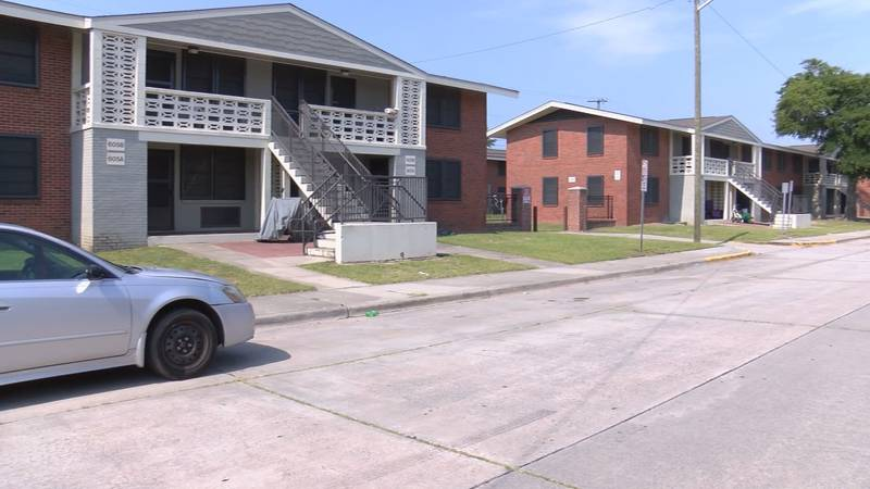 A family living in the Herbert Kayton Homes has been dealing with black mold in their apartment.