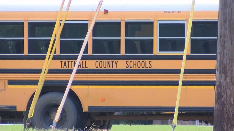 FILE - Photo of a Tattnall County school bus.