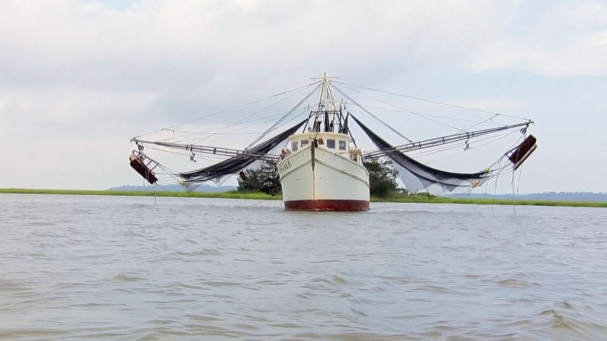 Additional COVID financial relief is available to members of Georgia's marine fishing-industry.