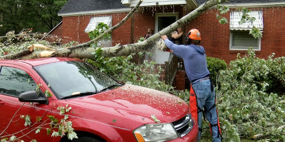 Crews working to remove a tree from the top of a car in Georgetown County.