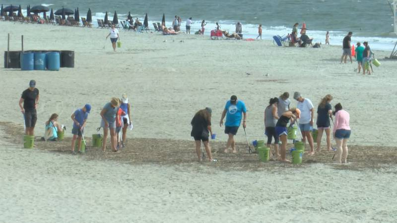 Volunteers with Fight Dirty Tybee clean up litter from the beach for World Cleanup Day.