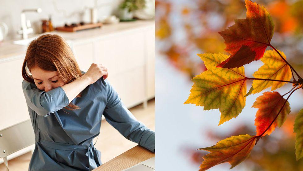 Seasonal allergies - not just a Spring thing!