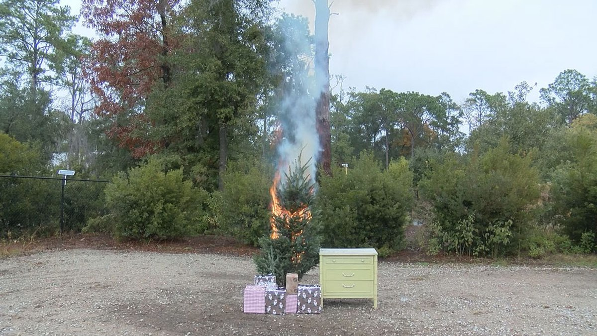 Bluffton and Burton fire departments teamed up on Thursday to show just how dangerous a tree...