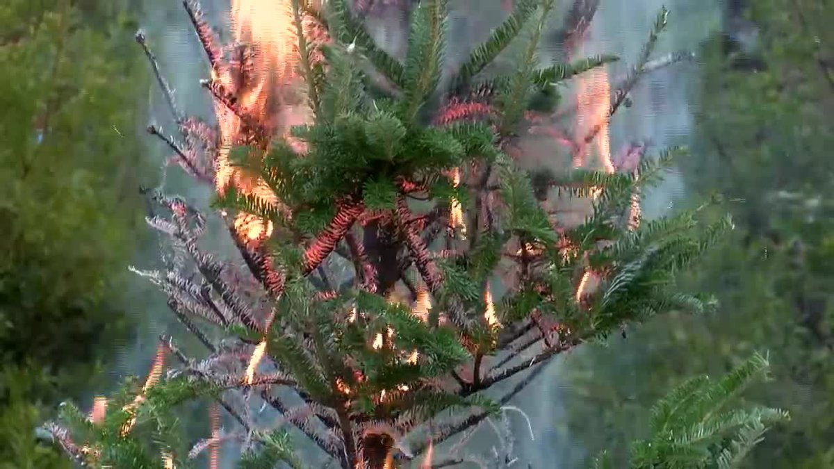 Tips on preventing holiday fires