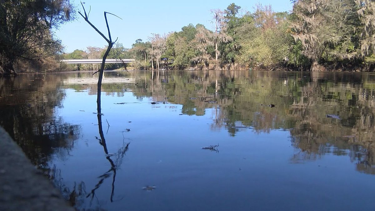 It's been almost a decade, but many of us can remember a fish kill along the Ogeechee River...