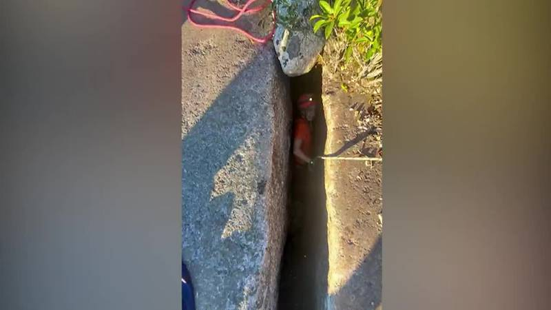 Rescuers save a dog trapped in a 40 foot deep crevice for 5 days. (Source: NEWS 12 WESTCHESTER...