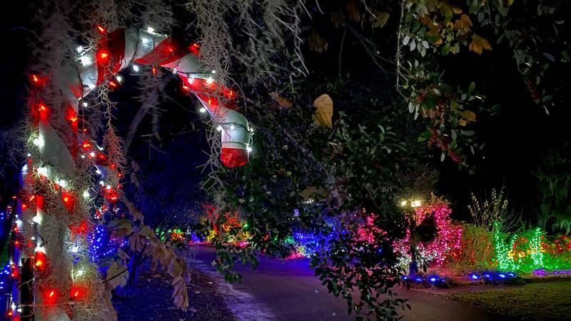 2020 December Nights & Holiday Lights at the Coastal Georgia Botanical Gardens.