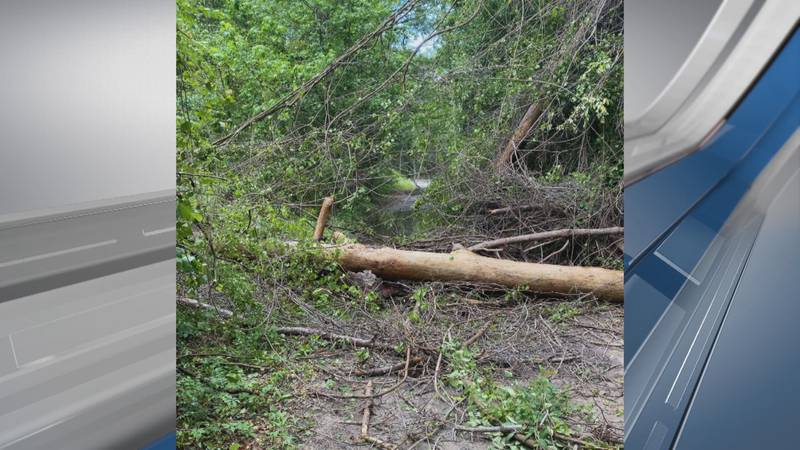 This shows the damage left behind in Beaufort County off Ramblin Road following Saturday's...
